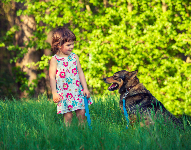 Little girl with dog in the park