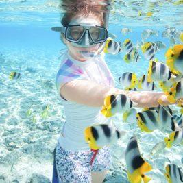Podvodne fotografije