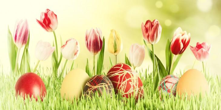 Velikonočni pirhi in pisani tulipani v travi